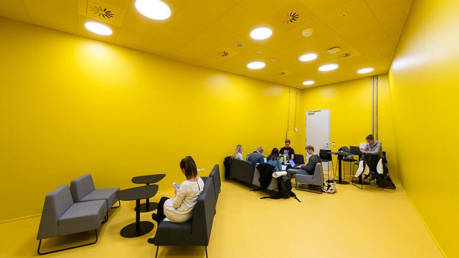 SDU Det Teknologiske fakultet,DK,Odense,C. F. Møller A/S,Bygningsstyrelsen,Svend Christensen,ROCKFON Color All,X-edge,600x600,white